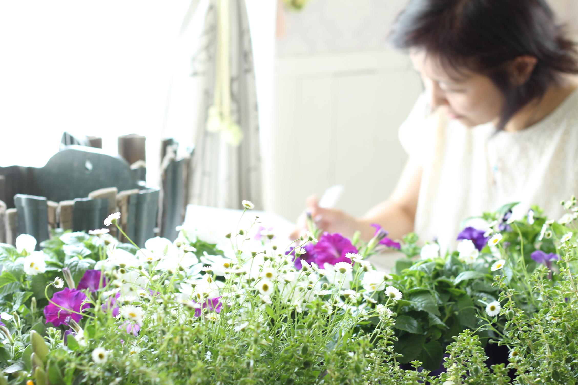 植物枯らしてばかり…から卒業しよう!初心者ガーデニングクラス【YouTube】