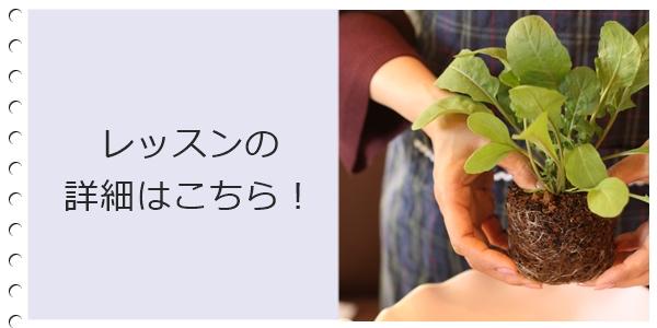 ガーデニング教室埼玉群馬初心者歓迎