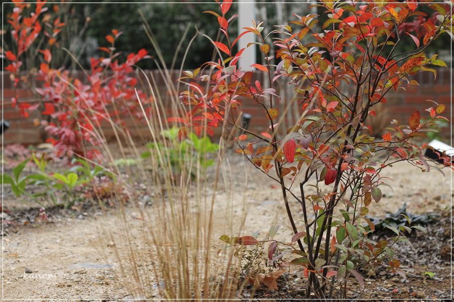 ナチュラルなお庭作り施工例:鴻巣市お庭リフォーム