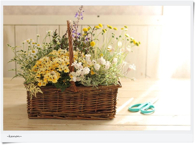 暑い夏にも元気に咲いてくれる寄せ植え、作りませんか?【5月の1DAYレッスン】