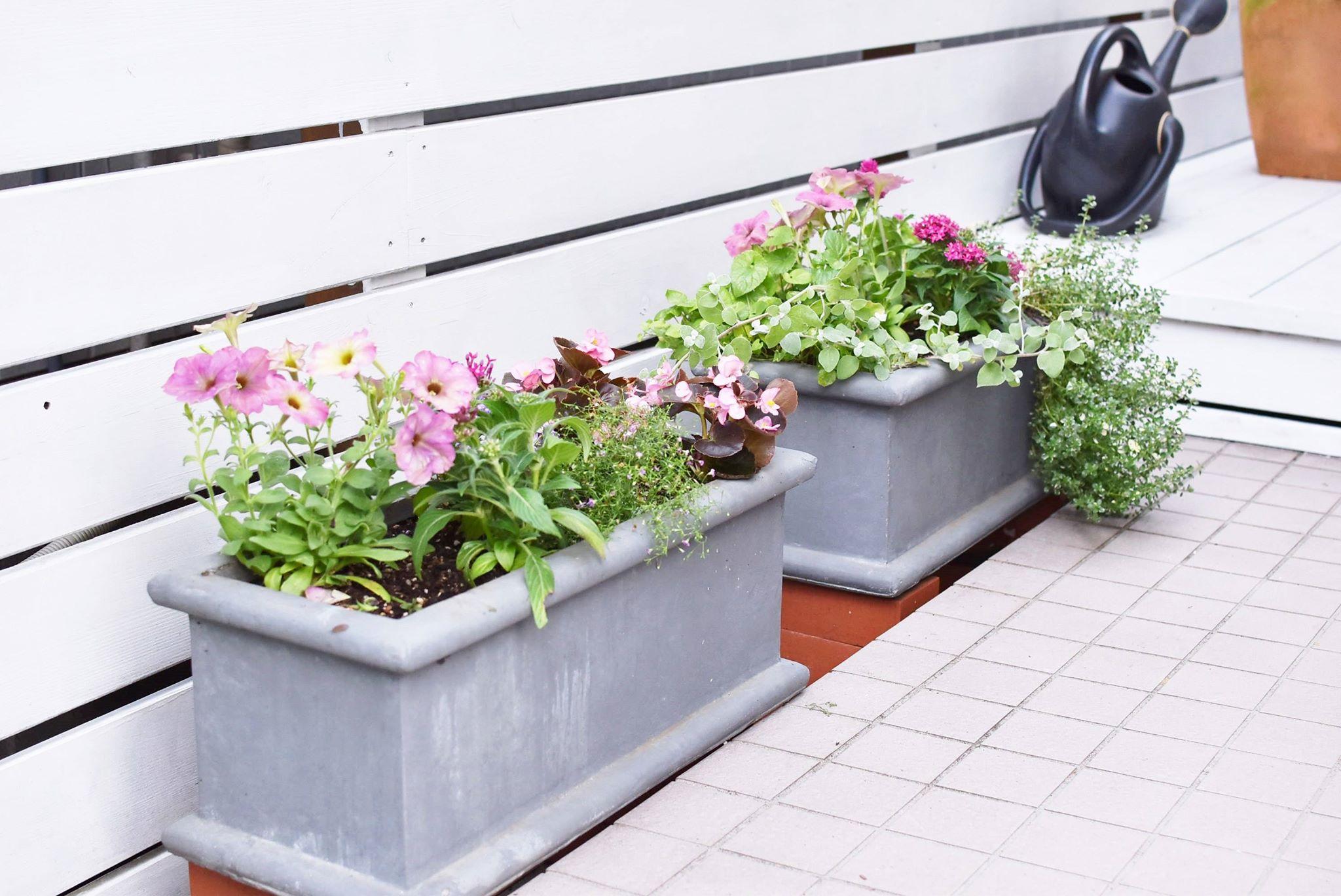 プランターの質が大切です【土がないお家のお庭作り施工例】