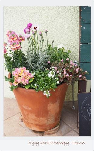 カフェ店舗季節のお花寄せ植えレンタルサービス埼玉群馬