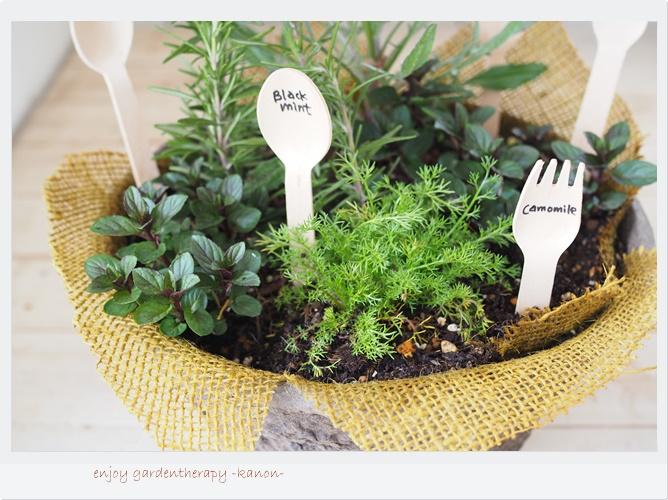 すべての基本は土!土中が元気なら植物も元気に育ちます