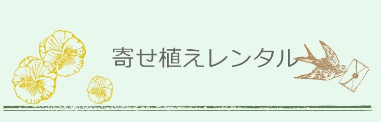 レンタル形式の季節の寄せ植え配達埼玉群馬