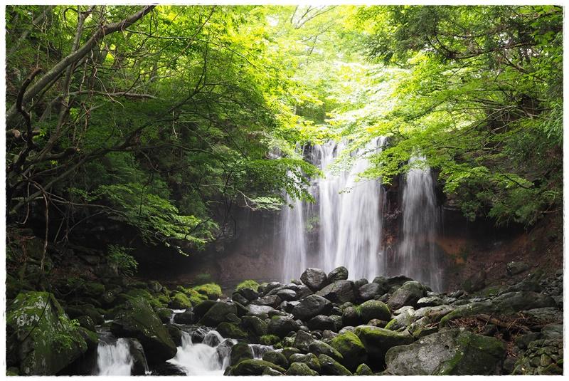 那須旅乙女の滝森林療法