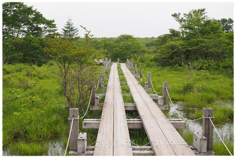 ガーデンセラピー森林療法旅那須
