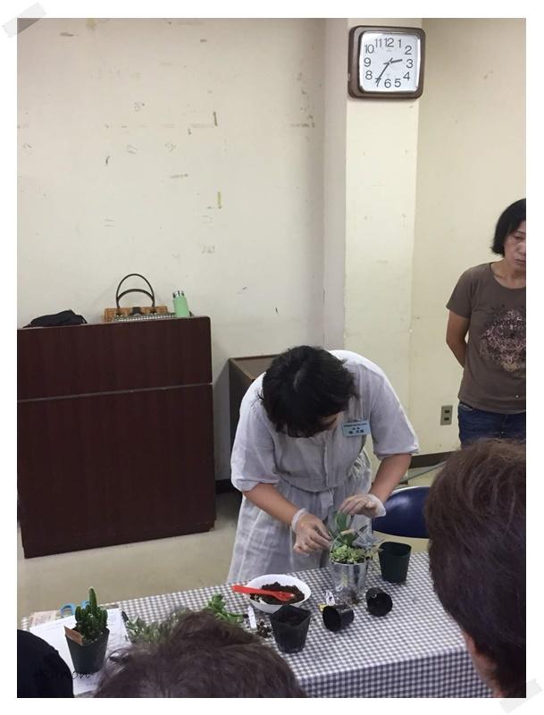 出張講座多肉植物の寄せ植え小川町公民館