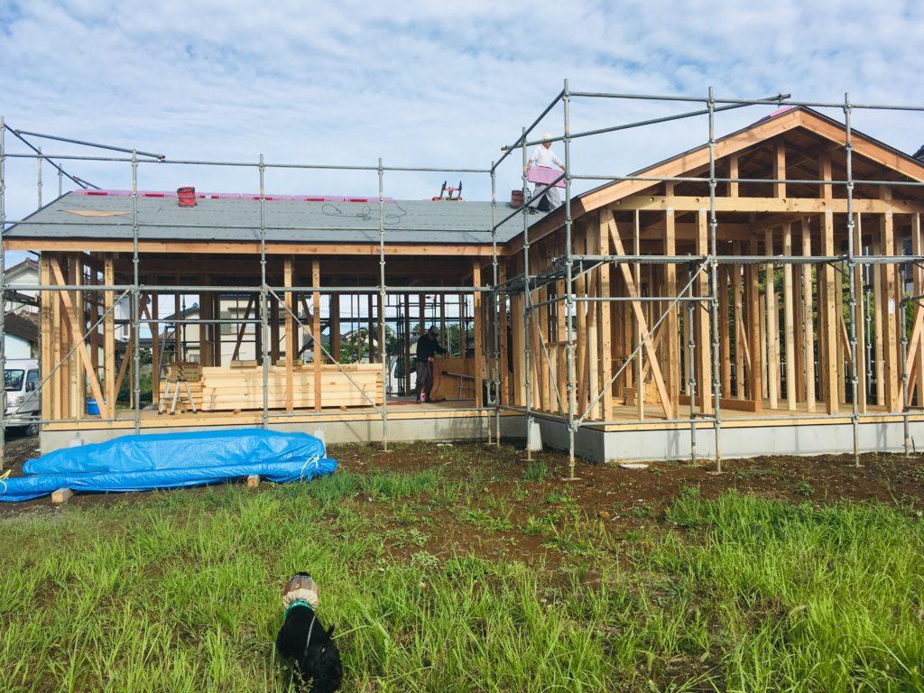 ガーデンセラピーの家と庭作り