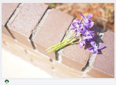 ガーデンセラピーが体験できる教室花音の森