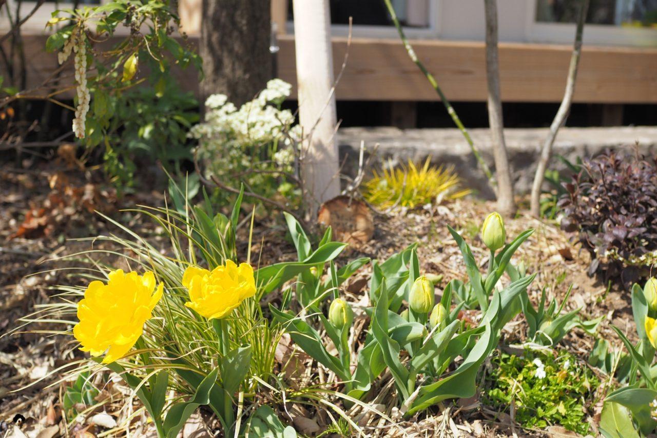 ハーブの使い方教室花音ガーデンセラピー