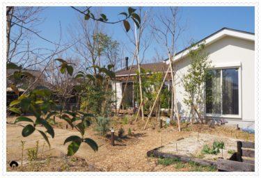 花音の森ガーデンセラピー園芸教室初心者