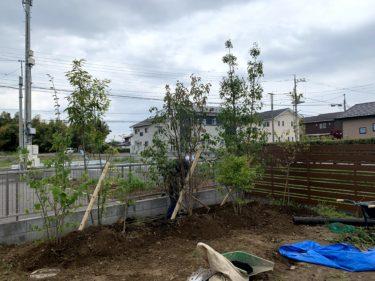 「こんな時だからこそ庭を作りたい」植栽施工例